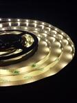 Profesjonalna taśma LED 150 SMD 5050 biały ciepły GERLED